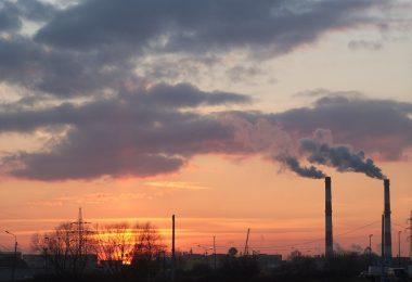 Sigue la lucha de Greta Thumberg contra el cambio climático