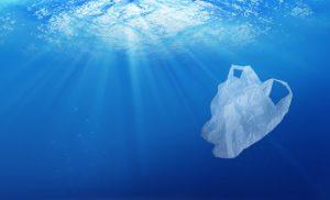Estrella Damm y la conciencia ecológica