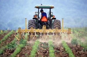 Ciclos Formativos de la Familia Agraria en Castellar del Vallés